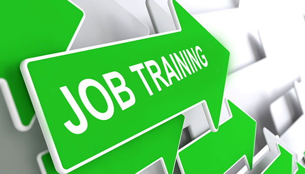 Job Training Job Training Laurie Cumbo