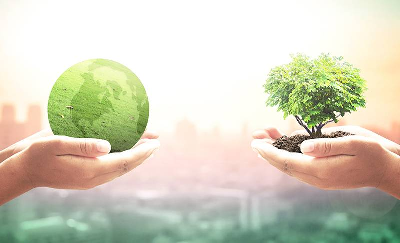 Check out these easy ideas that will help you become a iittle bit more sustainable and kinder to our dear friend Earth.