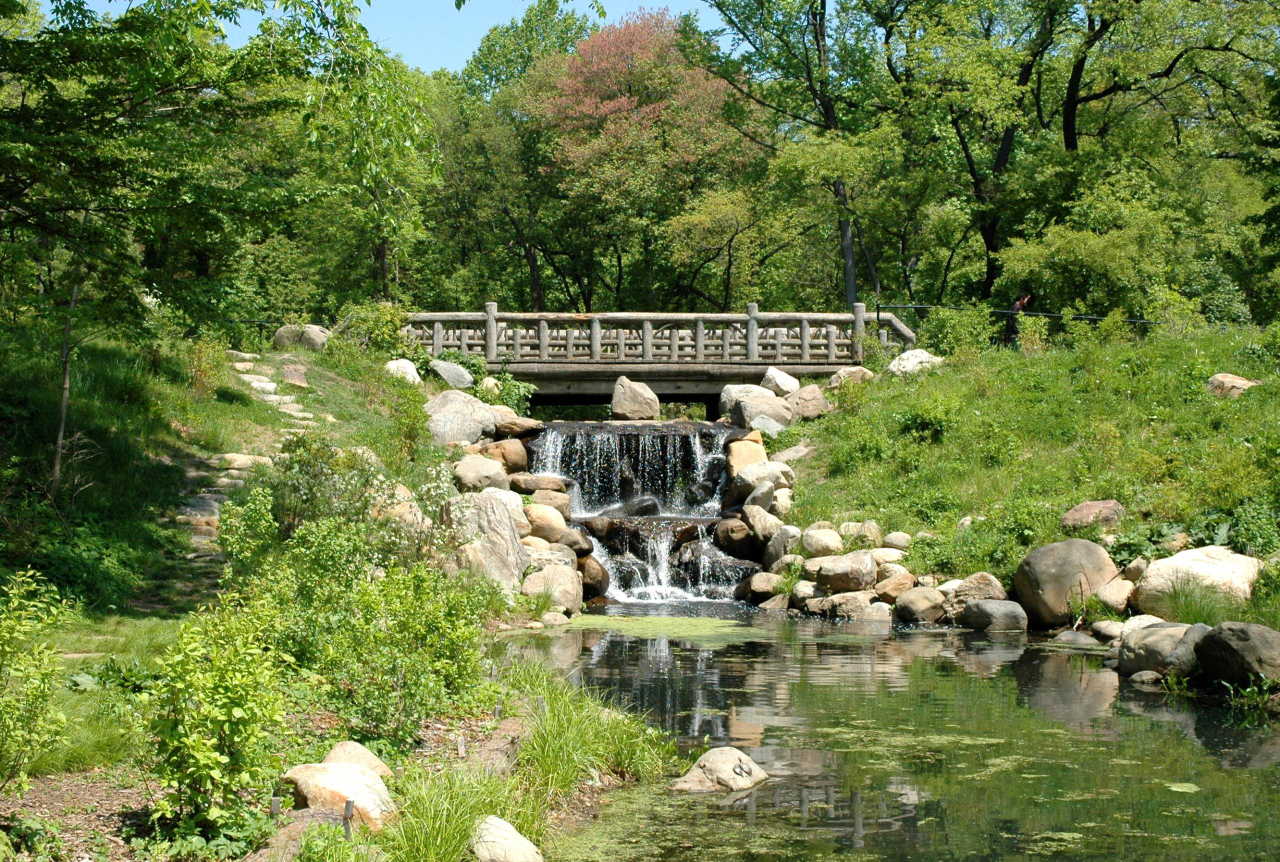 Earth Day, Prospect Park Alliance, 50th Anniversary, online